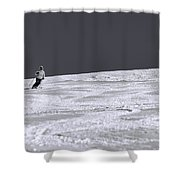 First Run Shower Curtain