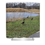3 Geese Shower Curtain