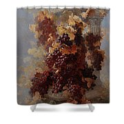 Grapes And Architecture Shower Curtain