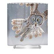 Great Grey Owl Shower Curtain