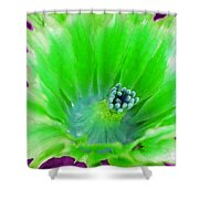 Green Cactus Flower Shower Curtain