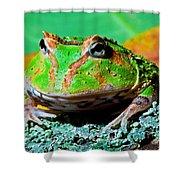 Green Fantasy Frogpacman Frog Shower Curtain