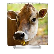 Happy Cow Shower Curtain