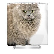 Highland Fold Lilac Self Shower Curtain