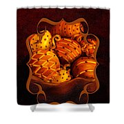 Holiday Citrus Bowl 2011 Shower Curtain