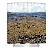 3 Horses At 4 Corners Shower Curtain
