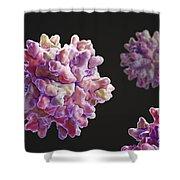 Infectious Bursal Disease Virus Shower Curtain