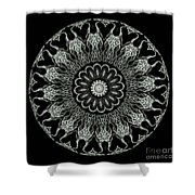 Kaleidoscope Ernst Haeckl Sea Life Series Black And White Set On Shower Curtain