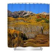 Kebler Color Show Shower Curtain