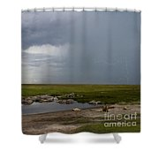 Lions In The Serengeti Shower Curtain