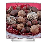 Mixed Holiday Nuts Shower Curtain