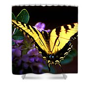 Monarch On Mountain Laurel Shower Curtain