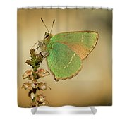 Nature And Places Of Spain Shower Curtain