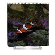 Nemo Shower Curtain