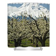 Orchard And Mount Hood, Oregon Shower Curtain