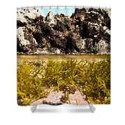 Over-under Split Shot Of Clear Water In Tidal Pool Shower Curtain