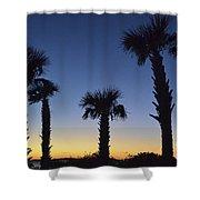 Carolina Palm Sky Shower Curtain