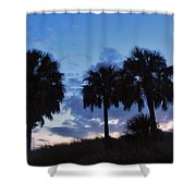 3 Palms 9/19 Shower Curtain