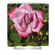 Paradise Rose Shower Curtain