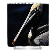 Pelican Profile Shower Curtain