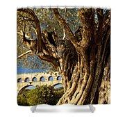 Pont Du Gard Shower Curtain