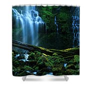 Proxy Falls Oregon Shower Curtain