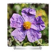 Rockrose Flower Shower Curtain