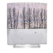 Rural Winter Landscape Shower Curtain by Elena Elisseeva