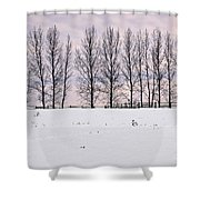 Rural Winter Landscape Shower Curtain