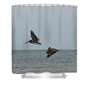 Scenes From Key West Shower Curtain