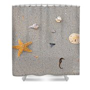 Sea Swag - Natural Shower Curtain