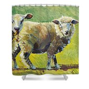 Sheep Painting Shower Curtain