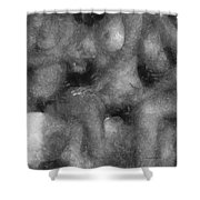 3 Some Abstract Erotica Bw Shower Curtain