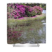 Spring In Mississippi Shower Curtain