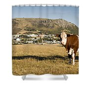 Stanley Tasmania Shower Curtain