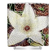 Star Fish Cactus  Shower Curtain