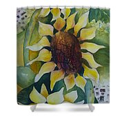 3 Sunflowers Shower Curtain