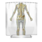 The Skeleton Female Shower Curtain