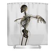 Three Dimensional View Of Female Shower Curtain by Stocktrek Images