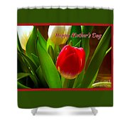 3 Tulips For Mother's Day Shower Curtain