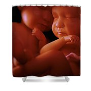 Twin Babies Shower Curtain