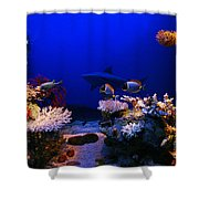 Underwater Scene Shower Curtain
