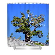 Warrior Against The Elements Shower Curtain
