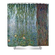 Waterlilies Morning With Weeping Willows Shower Curtain