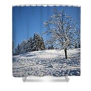 Winter Landscape Shower Curtain