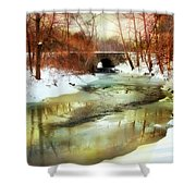 Winter Waters Shower Curtain