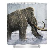 Woolly Mammoth Shower Curtain