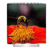 Working Bee Shower Curtain