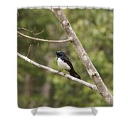 Yungabura Village Scenes Shower Curtain