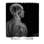Human Anatomy Shower Curtain